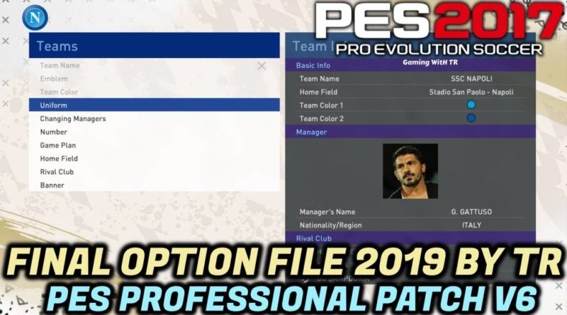 PES 2017   FINAL OPTION FILE 2019 BY TR   ALL PLAYERS SKIN COLOR FIXED   PES PROFESSIONAL PATCH V6